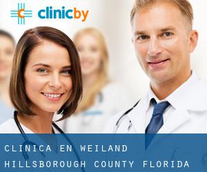 clínica en Weiland (Hillsborough County, Florida)